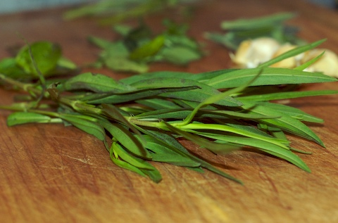 Bunch of tarragon