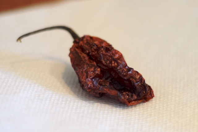 Naga Jolokia–the hottest known pepper in the world!