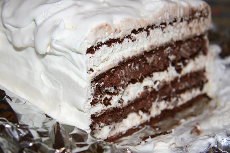 Cake Ice Cream Recipe : Chocolate Ice Cream Cake Chocolate Chip Cookies